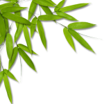 bamboo_leaves